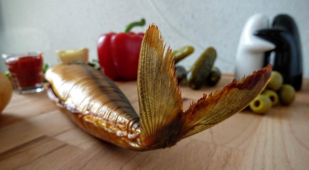 makrela ciekawostki